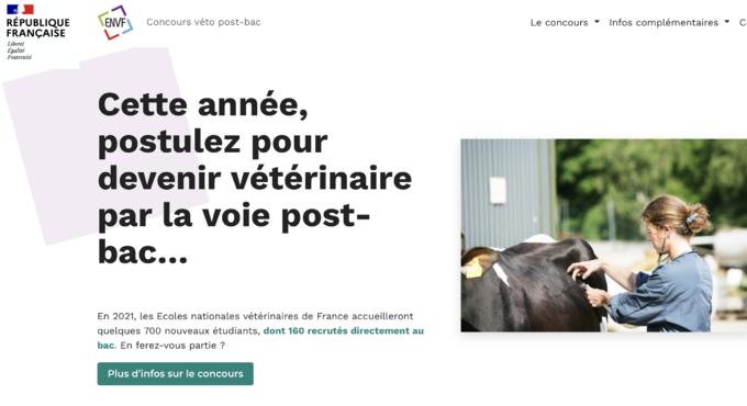 Veterinaire_Parcoursup.png